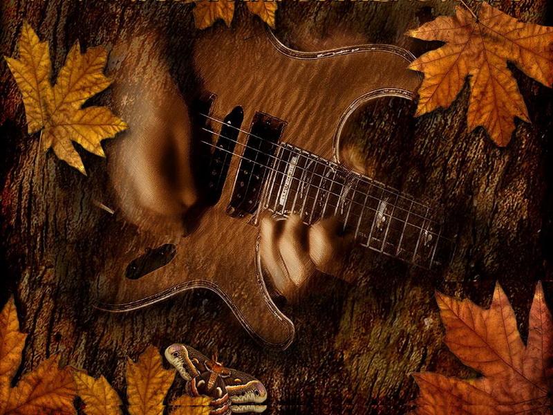 Autumn rockers