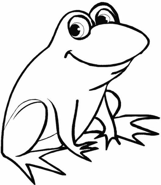 Раскраска лягушек распечатать