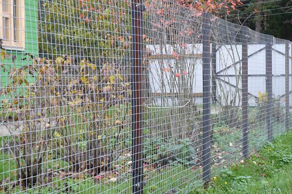 Забор из сетка сварная своими руками